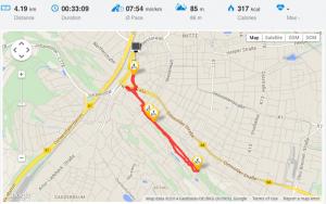 Auf dem Bild zu sehen: die Route meines ersten Laufs.