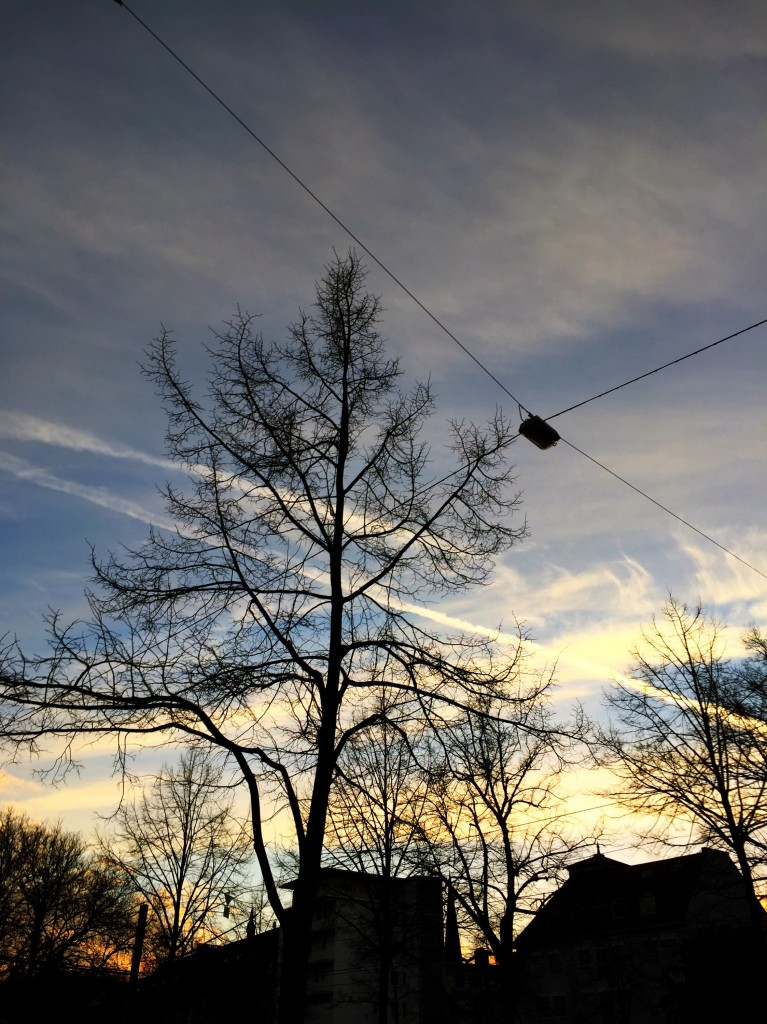 Abendhimmel mit Kondenstreifen über Bielefeld