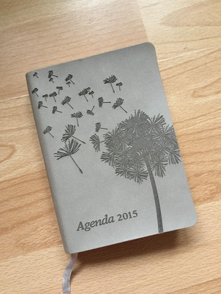 Agenda 2015 - grauer Taschenkalender mit Pusteblume drauf.
